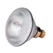 Soojenduslamp Philips Economy läbipaistev 100W