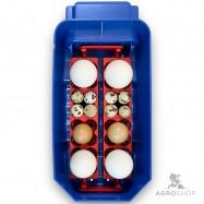 Inkubaator Borotto Lumina 8 Automatic